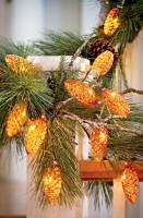 Add Some Sparkle to Holiday Decor Melinda Myers RVO
