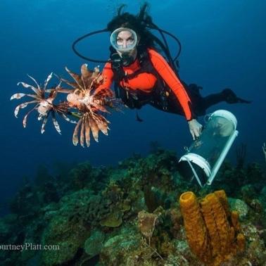 Lionfish University's Stacy Frank